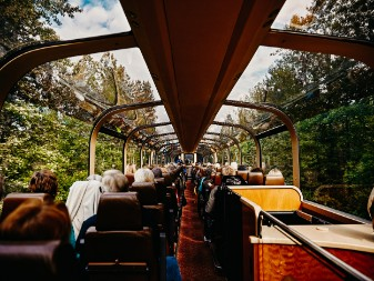 deluxe domed train