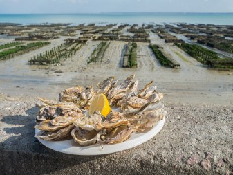 oysters of Cancale